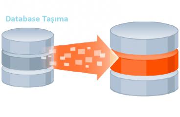 SQL Database farklı diske taşıma işlemi